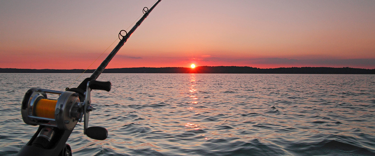 On this trip we will catch the greatest fish from finnish archipelago. Those fishes are zander, perch and pike.